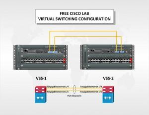 Basic VSS Pair Configuration